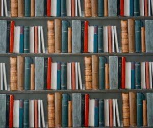 Canva Books on Bookshelves 300x250
